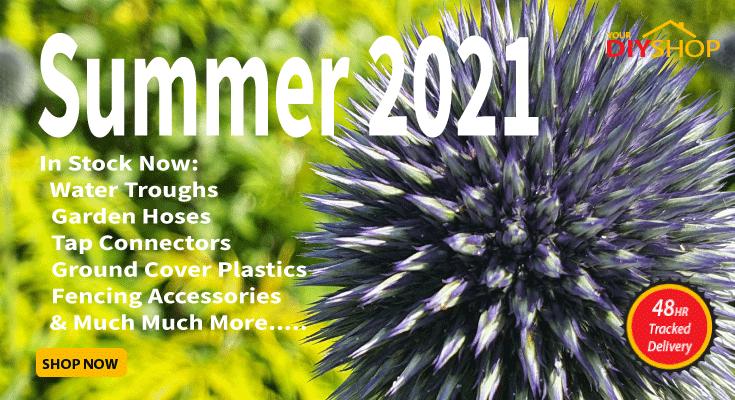 SUMMER 2020 2